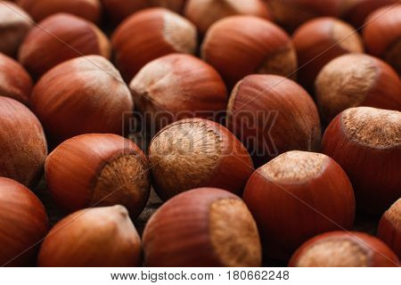 Brown background of hazelnuts close-up. Macro picture of pile of filbert nuts, bright autumn background. Harvest, fall, food ingredient concept