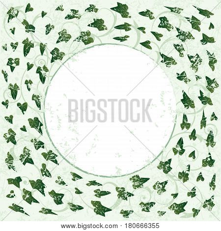 vector frame with ivy in green color