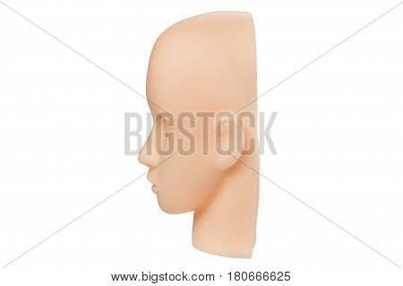 Realistic Mannequin Head