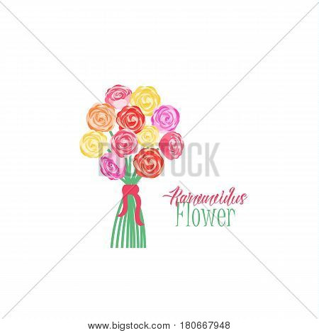 Vector illustration of ranunculus flower. Background with a flower bouquet
