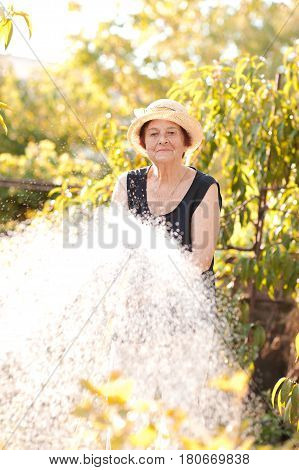 Smiling senior woman 70-75 year old watering plants in garden. Summer time. 80s.