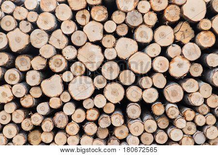 log walls, wood, log, tree, firewood, timber, woodpile
