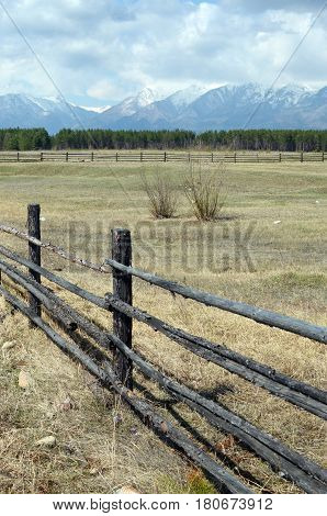 Spring Pasture In The Tunkinskaya Valley At The Foot Of The Sayan Mountains, Buryatia
