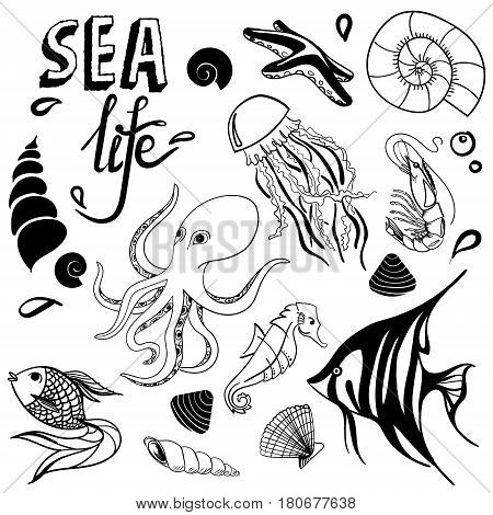 Sea life hand drawn sketch with seahorse, fish, seashell, seastar, jellyfish, octopus underwater isolated