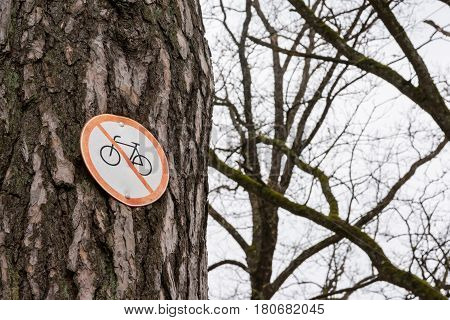 No Bicycle Sign Tree Pinned Bark Park Path Red White