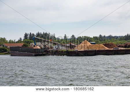 Mountain of Sawdust at Logging Operation in Oregon