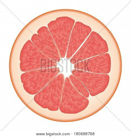 Isolated circle of juicy pink color grapefruit on white background. Realistic colored round slice