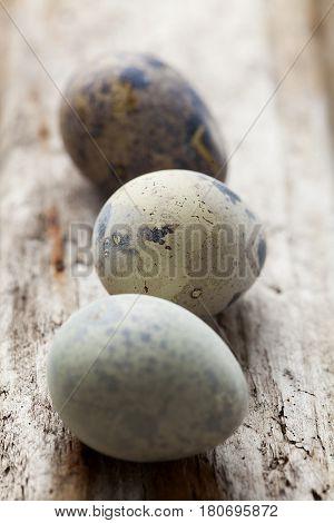 quial eggs