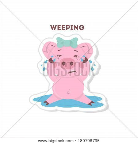 Isolated crying pig sits on white background.