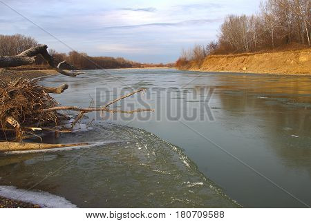 The Po River to coast of which the winter forest without foliage and also a snag from the sunk trees. In certain places on water ice was formed.