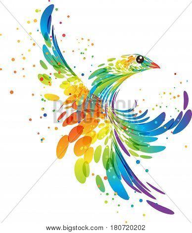Fantasy stylized colorful bird, splash vector illustration