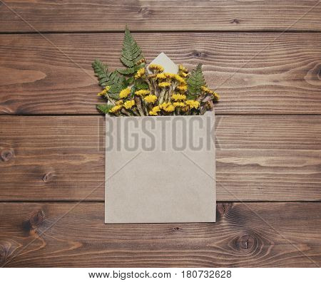 Yellow coltsfoot flowers in envelope on brown wooden background