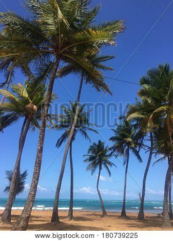 Balneario la Monserrate beach Luquillo, Puerto Rico