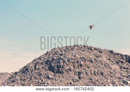 Industrial Background With Pile Of Gravel In Front Of The Sky. Extraction Of Gravel. Construction Of
