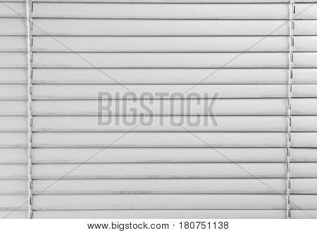 Dirty window blinds, closeup