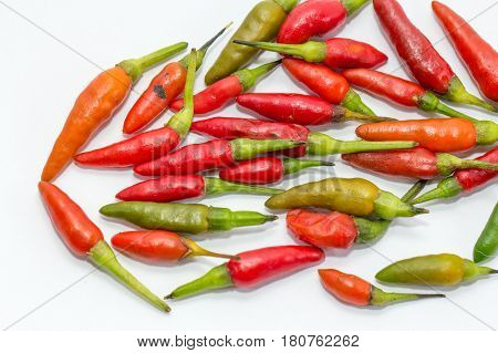 Red & green chilly pepper on white background.The chili pepper is the fruit of plants from the genus Capsicum, members of the nightshade family, Solanaceae.