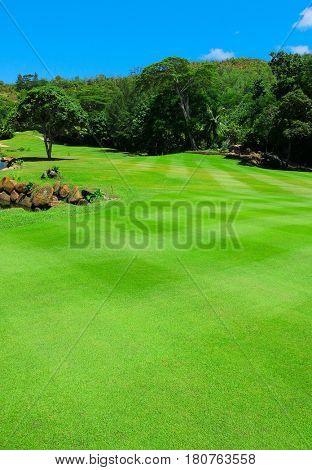Landscape Club Fairway