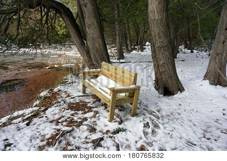 Snow covers a wooden bench next to a swamp in the Richard H. and Lydia Naas Raunecker Preserve in Harbor Springs, Michigan during November.