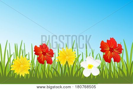 Year landscape glade with flower on background sky