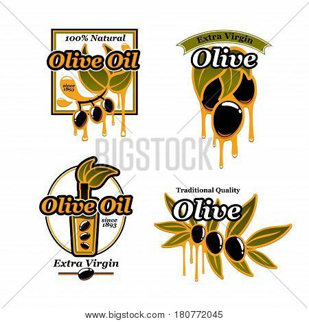 Olive oil icons of fresh green or black olives and bottles. Olive tree fruits vector symbols set for healthy Italian cuisine or extra virgin sort food product packaging