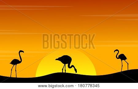 Silhouette of flamingo scenery at sunset vector illustration