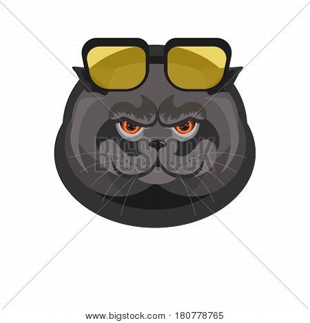 Black cat with sunglasses in dark frame portrait isolated on white. Vector colorful illustration in flat design of feline domestic animal head with red eyes and decorative spectacles on forehead