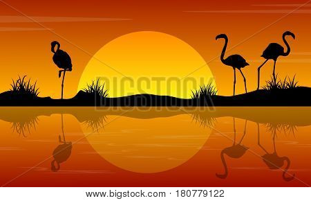Lake scenery with flamingo at sunset silhouettes vector art