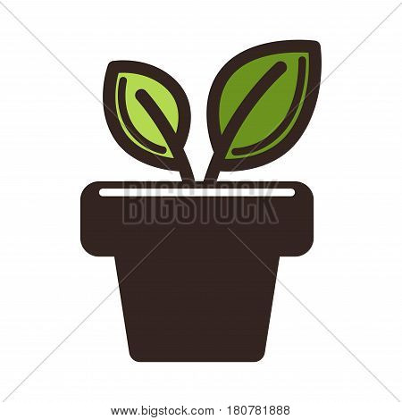 Two green leaves growing in pot isolated on white. Logo design of organic plant in flowerpot vector illustration. Logotype for company producing plants, leaf as symbol of new life, growth label