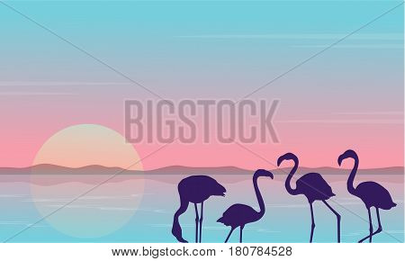 Collection stock of flamingo silhouette scenery vector illustration