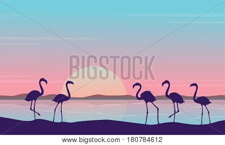 At sunrise flamingo scenery silhouettes vector illustration