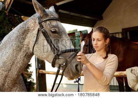 Young woman putting on harness on horse properly.