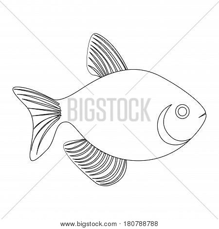 silhouette fish aquatic animal icon flat vector illustration