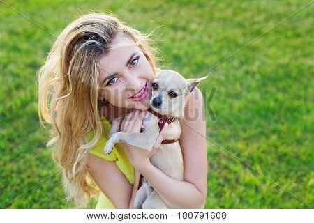 Glamour happy smiling girl or woman holding cute chihuahua puppy dog on green lawn on the sunset. People and pets concept.