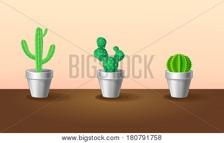 Beautiful exotic plants collection with green sharp cactuses in flowerpots on brown table isolated vector illustration