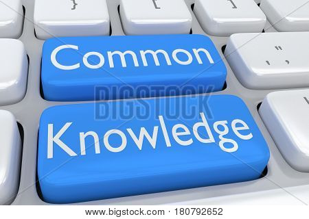 Common Knowledge Concept