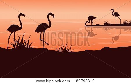 Scenery at sunset with flamingo silhouettes vector illustration