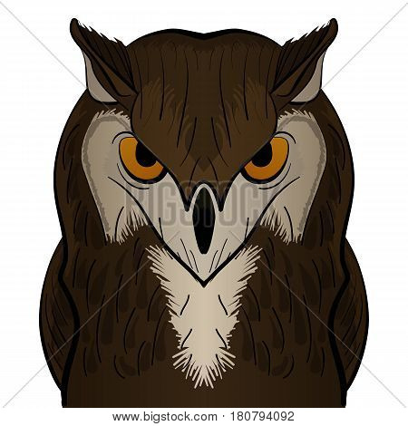 Vector cartoon clip art illustration of a cute owl mascot