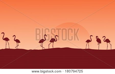 Scenery flamingo at hill silhouettes vector illustration
