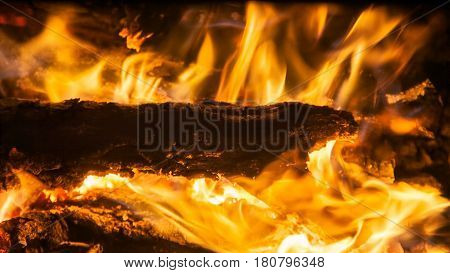 Burning firewood in the fireplace closeup texture of fire and flame dark background