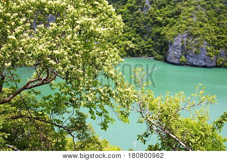 Kho Tao Bay Abstract  Green Lagoon   Water