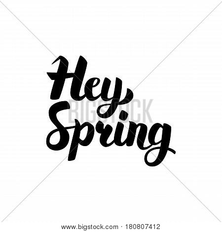 Hey Spring Handwritten Calligraphy. Vector Illustration of Ink Brush Lettering Isolated over White Background.