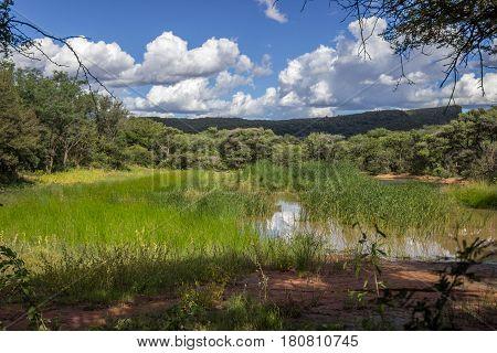 landscape photo over a pond in Marakele national park
