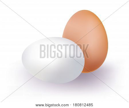 Brown and white eggs on white background