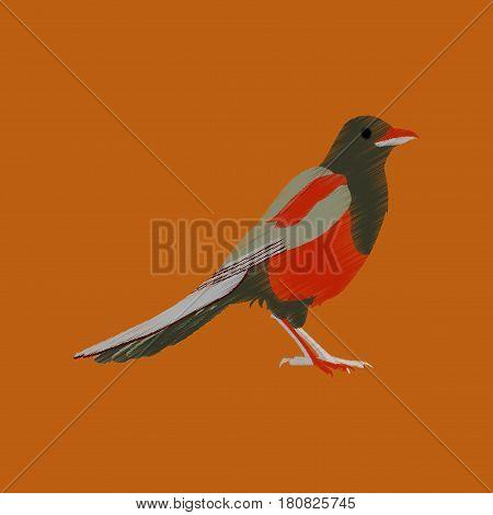 flat shading style icon magpie bird wildlife