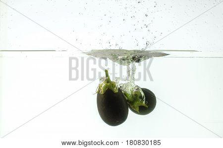 egg plant fruit splashing into water white background