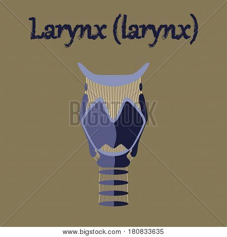 human organ icon in flat style larynx