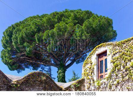Italy Amalfitana Coast Ravello Villa Rufolo detail