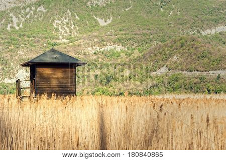 Raised Shed Hunting For Ducks In The Middle Of Rushes