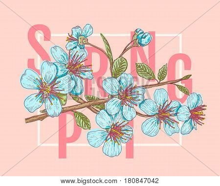 Vintage vector illustration flowers of the cherry blossoms with letters Spring. Spring and sakura on pink background.