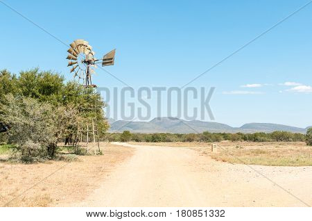 CAMDEBOO NATIONAL PARK SOUTH AFRICA - MARCH 22 2017: A road and a water-pumping windmill between Acacia trees in the Camdeboo National Park